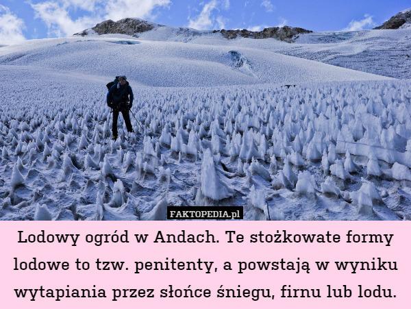 Lodowy Ogrod W Andach Te Stozkowate Formy Lodowe To Tzw Penitenty